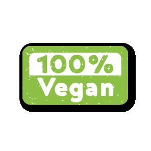 Stickers '100% Vegan' lichtgroen-wit rechthoek 38x21mm